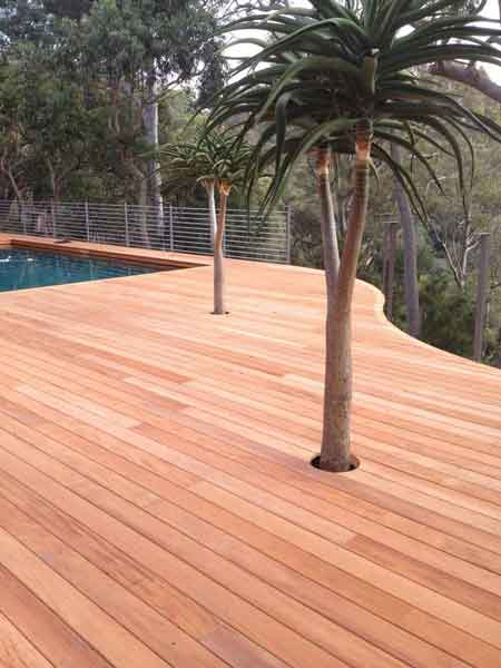 Mahogany decking left untreated